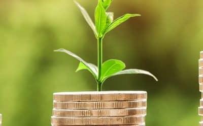 Conquérir votre liberté financière. Les 3 choix à faire.