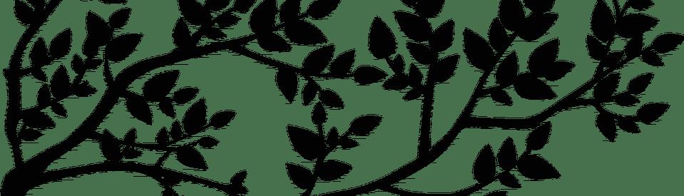 fonds de développement durable