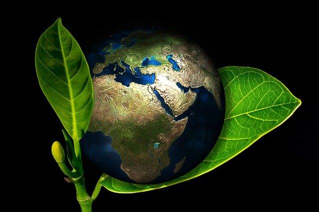 investir éthiquement, durablement et écologiquement